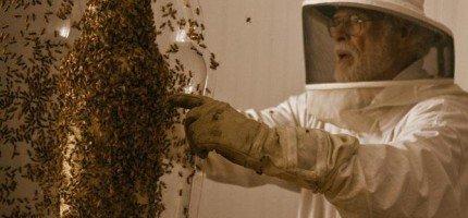 不就是一個喜歡玩蜜蜂的老頭嗎?看過後你才會知道有多酷!