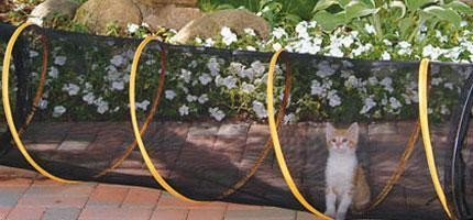 30個超荒謬但是每位養貓人士都一定要有的貓咪用品。#2把我笑死了!