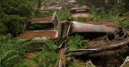 這不是一個恐怖電影的場景,而是一個70年前的大塞車。