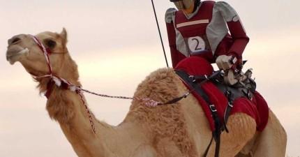 15個關於杜拜的驚人極富事蹟,會讓你看完後頓時失去工作的動力。