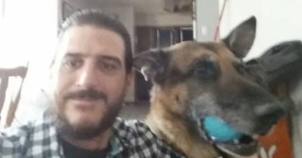 這名男子因愛犬被偷而傷痛不已。他撫平傷痛點開了收容所的網站想再領養卻看到讓他心臟停止的照片。