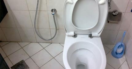 這家公司要付你40萬台幣在他們的廁所裡上大號。