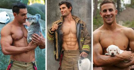口水裸肌澳洲消防員合體超萌毛孩,讓女粉都大喊失火了!