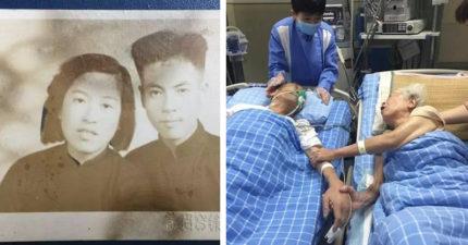 老爺爺臨終前哀求護士:我好想我的老太婆…兩人病床上拉著手「互許來生」令人鼻酸