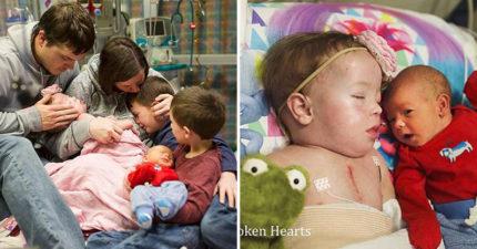 女童「等不到心臟」家人忍痛道別,父母請攝影師記錄「女兒生命最後時刻」拍下最絕望唯美畫面