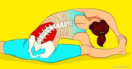 上班族必學8招!每天15分鐘就能「舒緩腰痠背痛」困擾