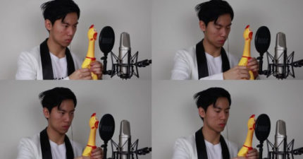 影/台裔音樂家狂壓雞肚 演出「4重奏尖叫雞卡農」爆紅!