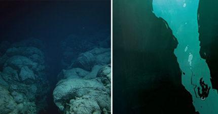 你以為海底安靜無聲?科學家錄到「顫慄海神怒吼」解開聲音神秘謎團!