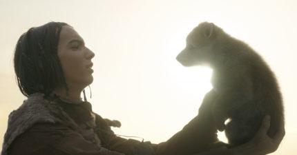 【極地之王】 跨越種族的奇幻冒險旅程 9月21日 震撼大銀幕