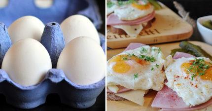 5大優點告訴你「早餐吃雞蛋」是最佳選擇 從眼睛顧到腦袋還會變瘦!