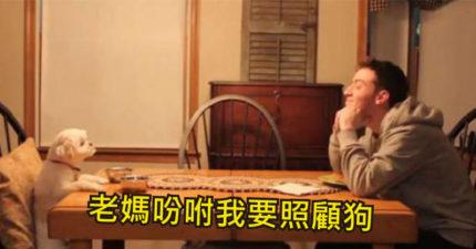 度假爸媽收到兒子傳來「太遵守承諾影片」 羨慕到想馬上衝回家!