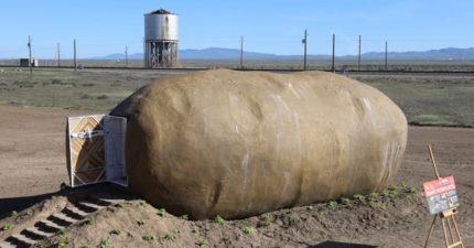 這個「巨型馬鈴薯」竟是一晚7600塊旅館!進去後「簡直是兩個世界」讓人好想住❤