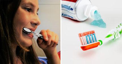 研究發現「用3週的牙刷」比馬桶水還髒 專家公布「換牙刷黃金時間」不換心臟會出事!
