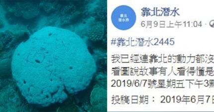 網紅在小琉球珊瑚礁「刻字留念」破壞生態 網暴怒肉搜本人…她:我太興奮了!