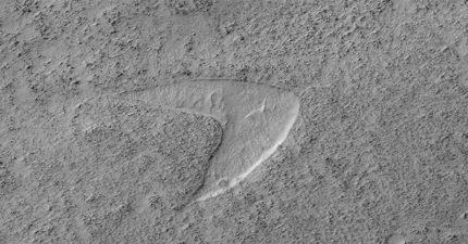 NASA公開「火星地表照」引關注 眼尖網友看到「倒V」驚呆:是《星艦迷航記》標誌!