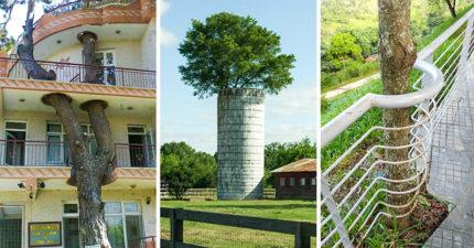 25張證明「人類可以不當大自然的敵人」的超酷建築設計