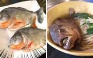 超暗黑料理!日本推「食人魚拉麵」一碗要1500 網看到「大嘴尖牙畫面」嚇壞:不敢吃