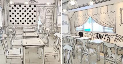 東京「2D咖啡廳」大爆紅 整家店「只有線條」卻更美!