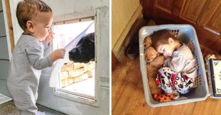 25張小孩和寵物「變最佳夥伴」的溫馨照 她當獸醫「大狗乖乖演病人」❤