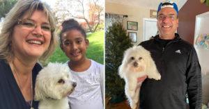 影/糊塗爸去美容院「接回1隻狗」 到家後才發現:不是我們家那隻!