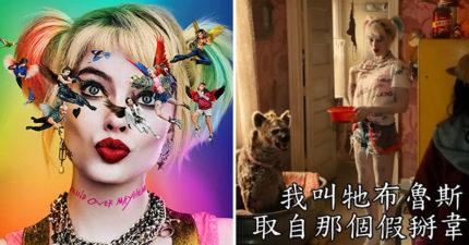 影/《猛禽小隊》全新預告曝光!小丑女的「寵物名字」搞笑諷刺蝙蝠俠