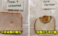 你的手有多髒?專家「用麵包測試」細菌指數 「沒洗手就碰東西」超可怕!