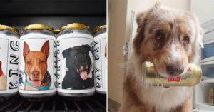 愛犬「後院走失」主人找到崩潰 三年後出現在「啤酒罐上」竟然真的回家了!