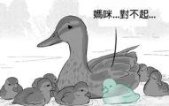 小鴨過馬路落單「被死神溫柔捧起」逼哭網友 動物漫畫充滿洋蔥!