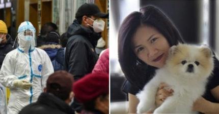 全球首例「寵物確診」檢出弱陽性反應 香港「確診女富商愛犬」遭隔離!