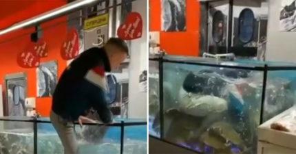 悲慘男求婚被拒「戒指還被丟魚缸」 他含淚「濕身撿戒指」警察秒逮捕