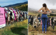 紐西蘭無限擴增「胸罩柵欄」不要知道起源故事會比較壯觀