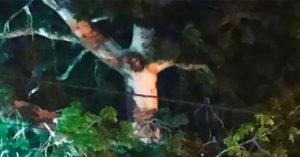 耶穌顯靈哥倫比亞樹上「群眾聚集禱告」讓政府崩潰:快回去!