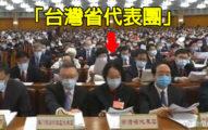 中國人大會議「台灣省代表團」現身 13名代表「只有1個」在台出生