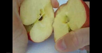 徒手切開蘋果