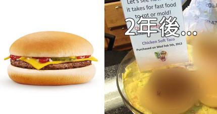 漢堡兩年後