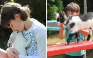 「自閉症俱樂部」推動物療法 和毛夥伴相處「有效改善孩子病情」