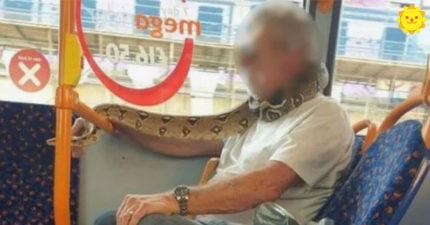 公車驚見老翁戴「活生生口罩」乘客嚇歪 運輸公司:沒剝皮絕對不行