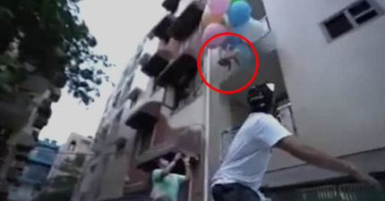 網紅把愛犬「綁在氣球上」 想看看「能不能飛上天」