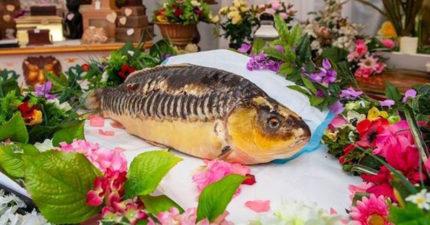 陪伴20年的「鯉魚哥」過世 飼主舉辦「最獨特寵物葬禮」!